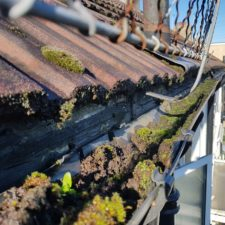 Gutter Cleaner London