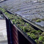 blocked-guttering-highgate-N6-North-London