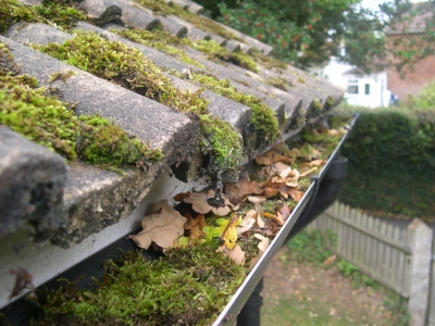 Roof And Gutter Cleaning Repair Amp Maintenance In London